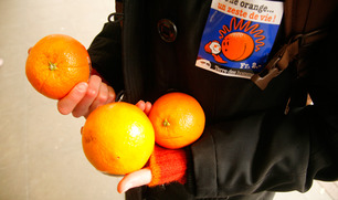 1223_orange_sale_img8_embed