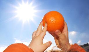 1225_orange_sale_img11_embed