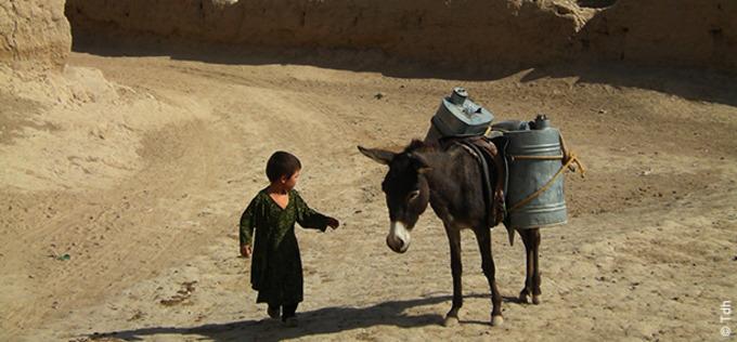 5941_afghanistan_news_list