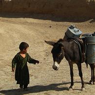 5941_afghanistan_small_news