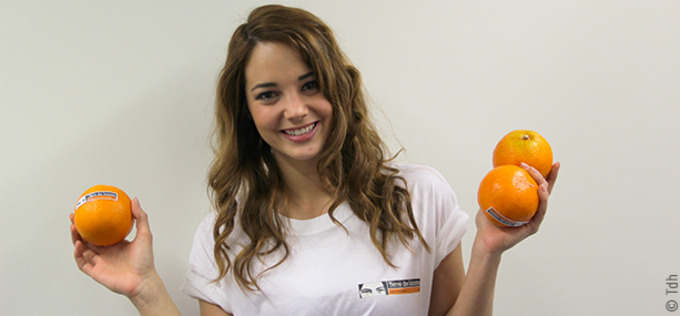 7055_miss-suisse-oranges-header_news_list